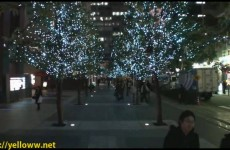 Awesome Christmas Lights in Tokyo Japan