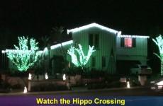 Best Christmas Lights in Orange County – Laguna Hills