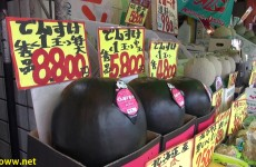 Eating Expensive Melons in Japan