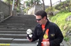 Panda Race!