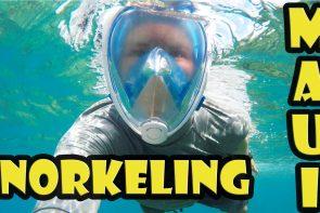 Snorkeling at the Andaz Maui – Mokapu Beach Park